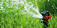 INTEGRA - Plant watering control